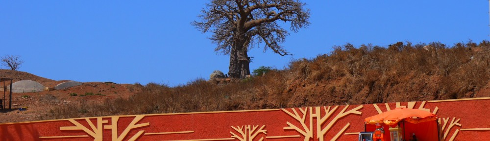 Baobab tree next to statue, Dakar, Senegal
